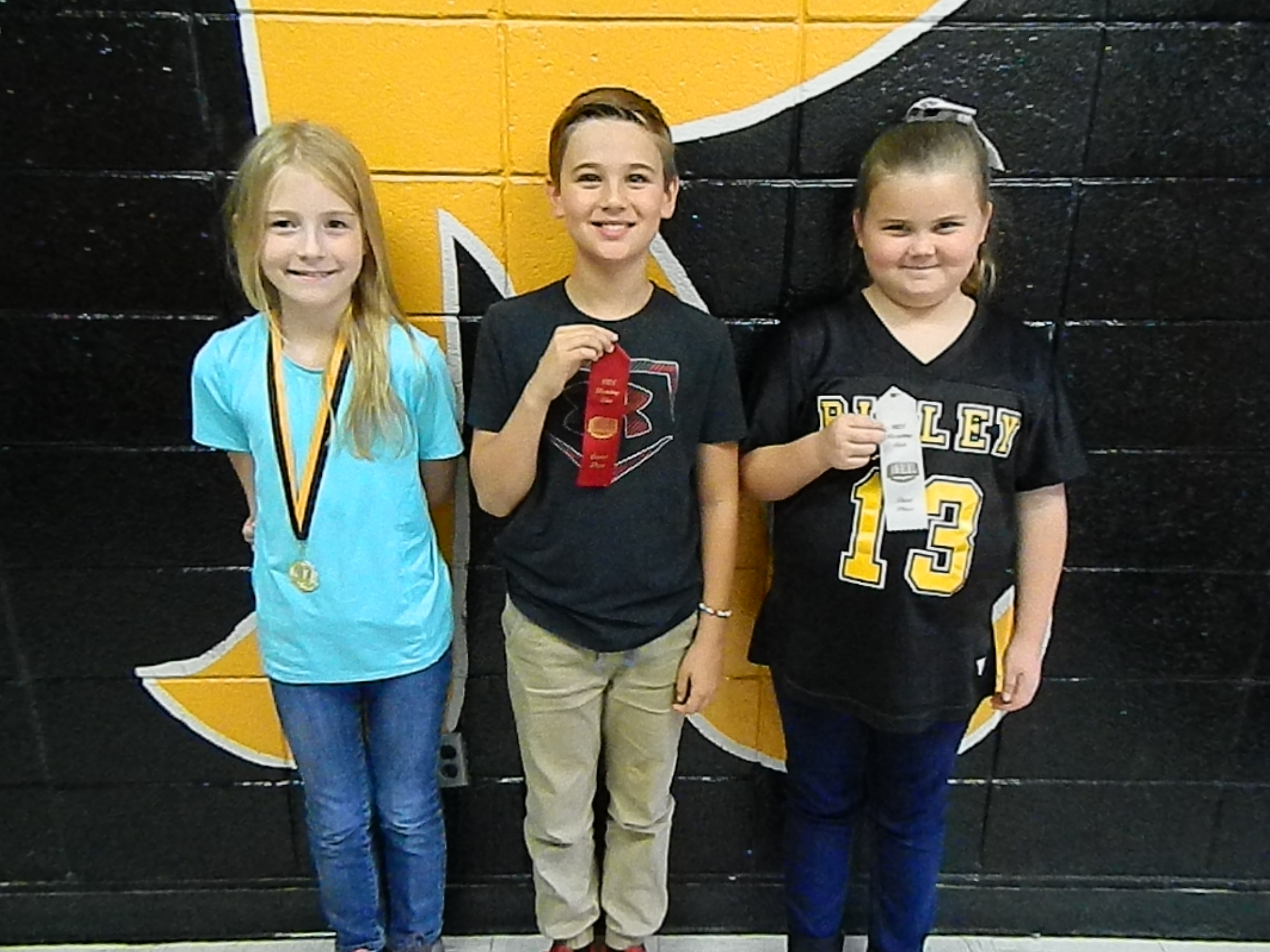 Third Grade Reading Fair Winners